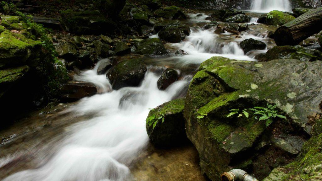 竜化の滝 苔むした岩