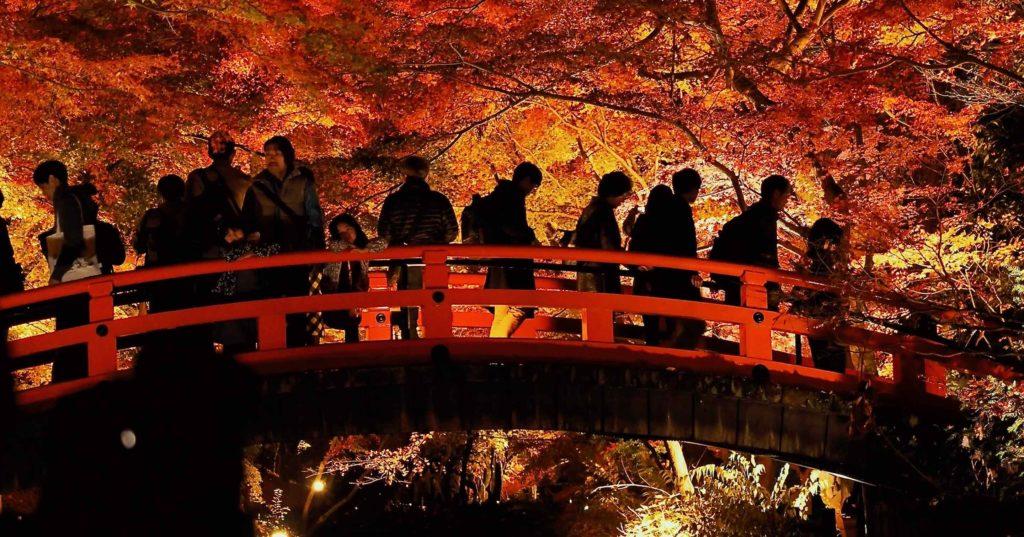 鶯橋と紅葉