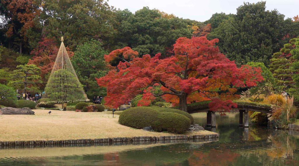 F値8で撮影した六義園紅葉
