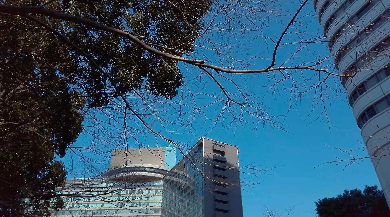 ホテルニューオオタニの日本庭園は外国人にも人気