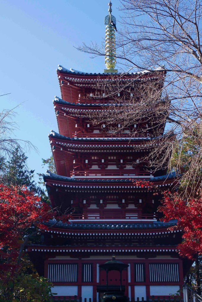 本土寺 五重塔