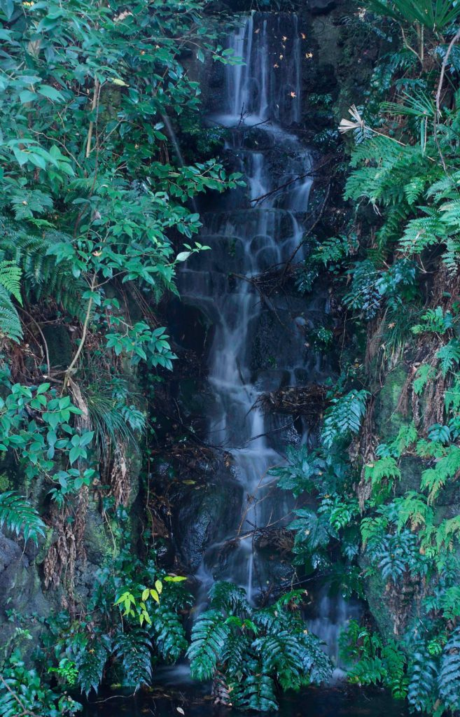 本土寺の滝