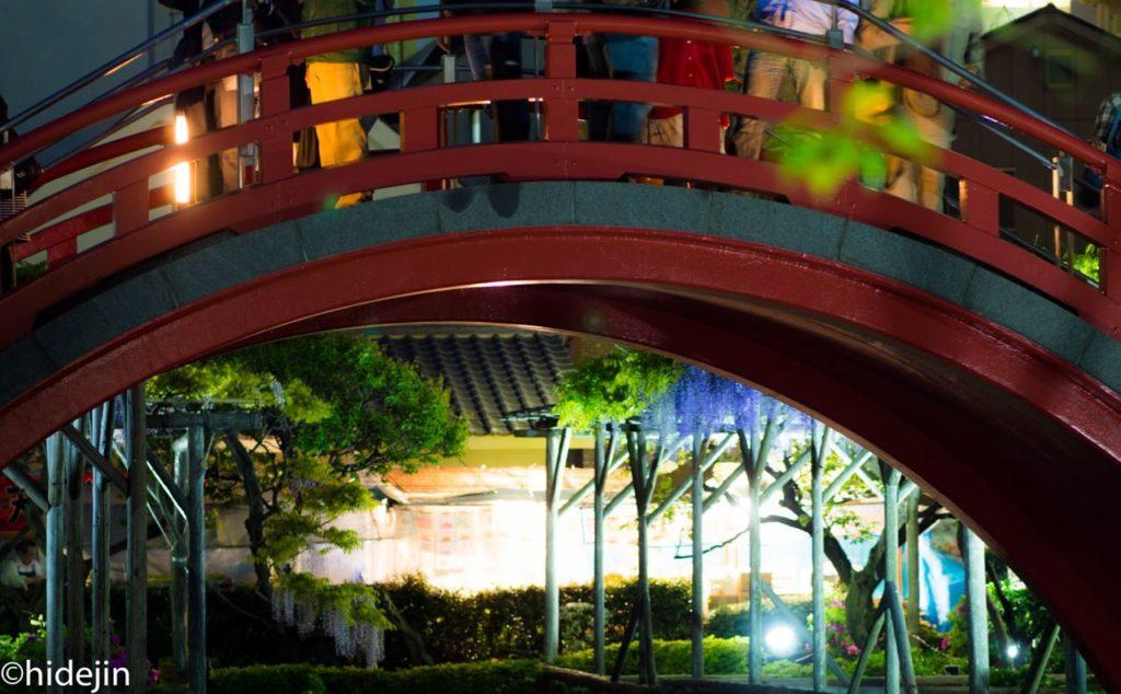 太鼓橋のライトアップ