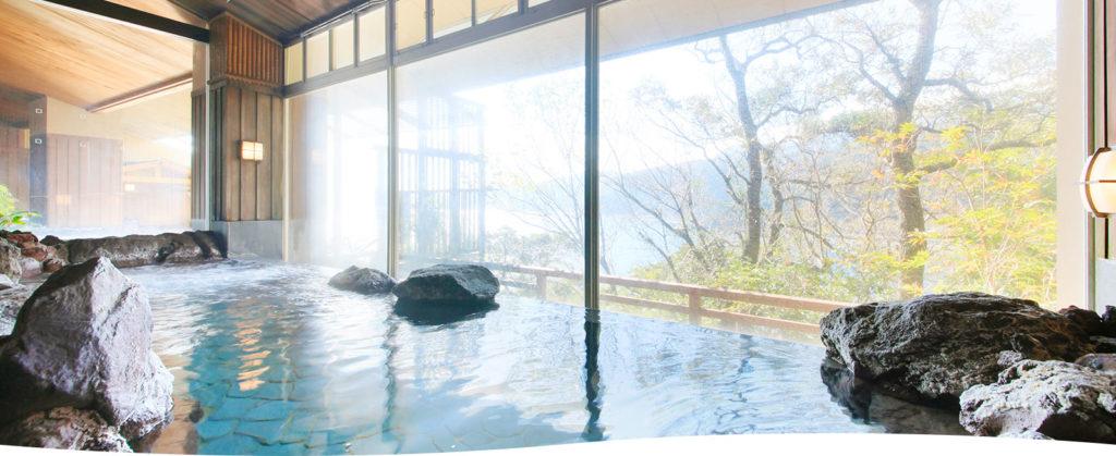 DHC赤沢温泉ホテルの岩風呂 内湯