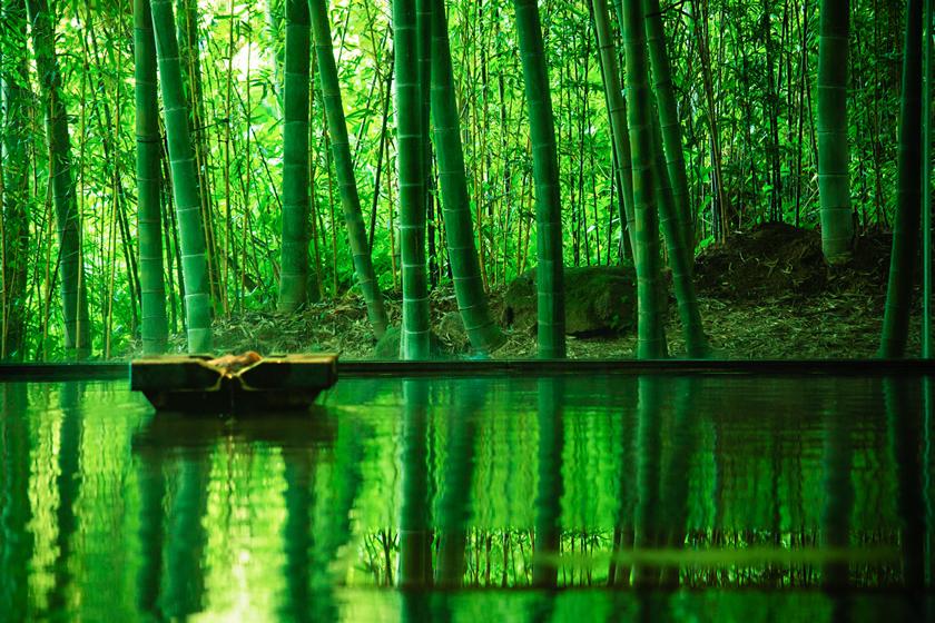 優彩 竹林の湯